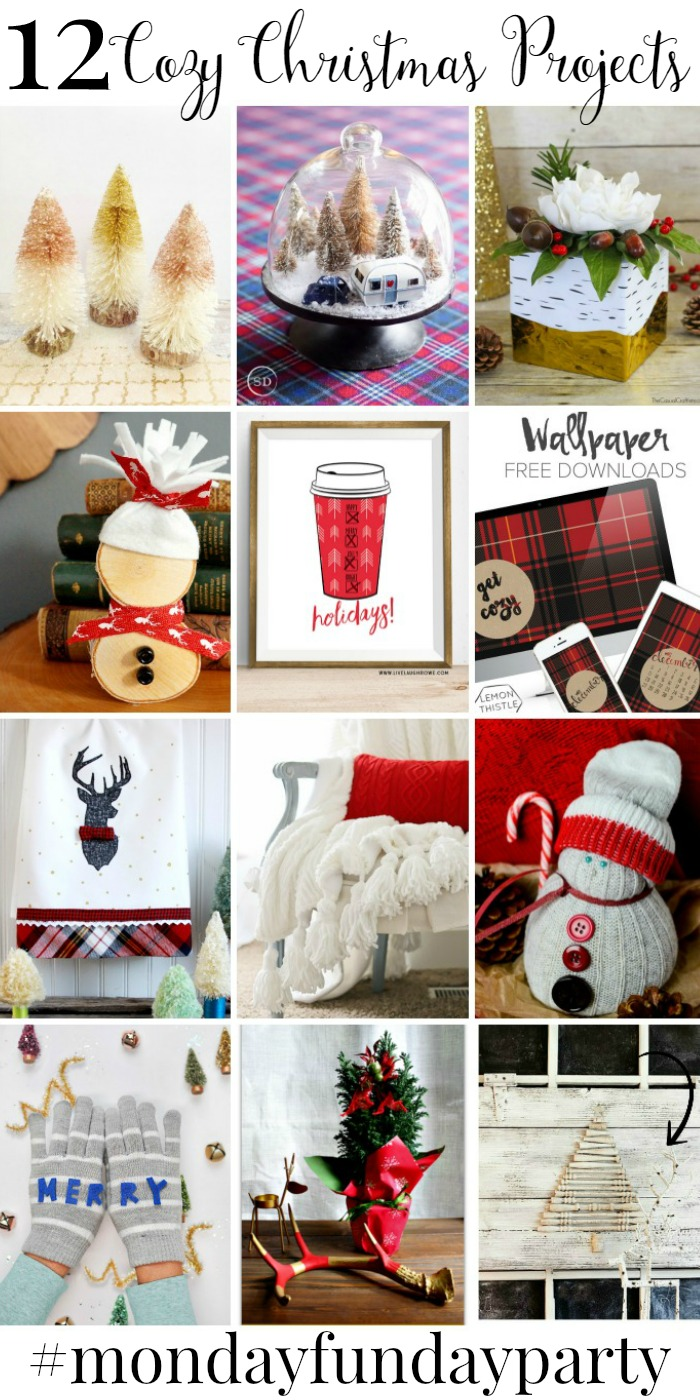 12 Cozy Christmas Projects