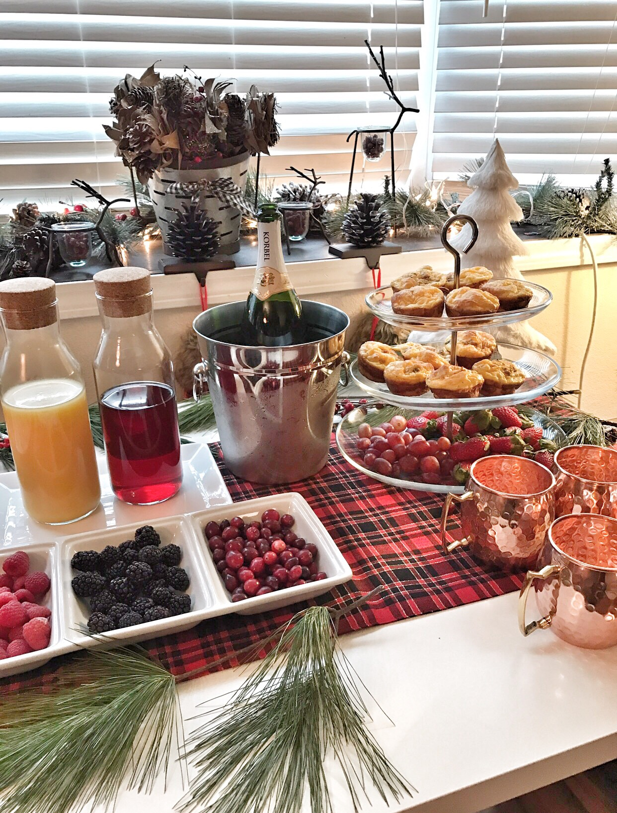 Host a Holiday Party with a Christmas Cranberry Mimosas